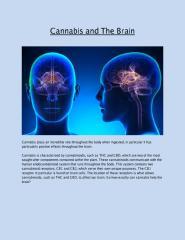 Cannabis and The Brain.pdf