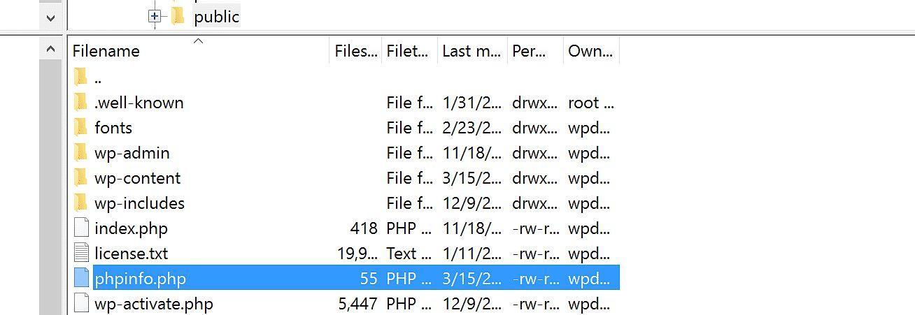 upload phpinfo file